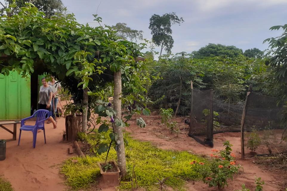 El asentamiento 3 de julio está rodeado de vegetación abundante y  árboles de distintas formas y alturas.