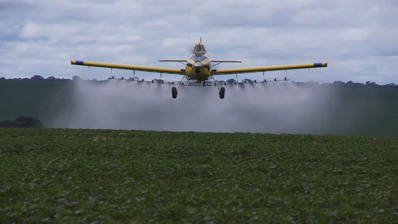 Avión aplica pesticida. Foto: Fiocruz
