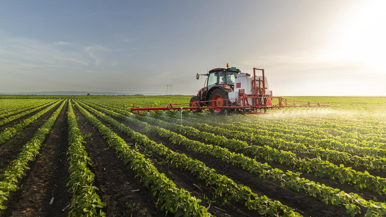 Monocultura mecanizada de soja. Foto: Adobe Stock