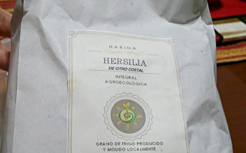 """""""Del otro costal"""", la harina agroecológica que producen los Vecinxs Autoconvocadxs de Hersilia con el viejo molino que lograron hacer funcionar."""